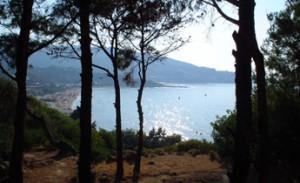 Sicht auf den Strand