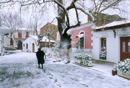 Raches im Schnee
