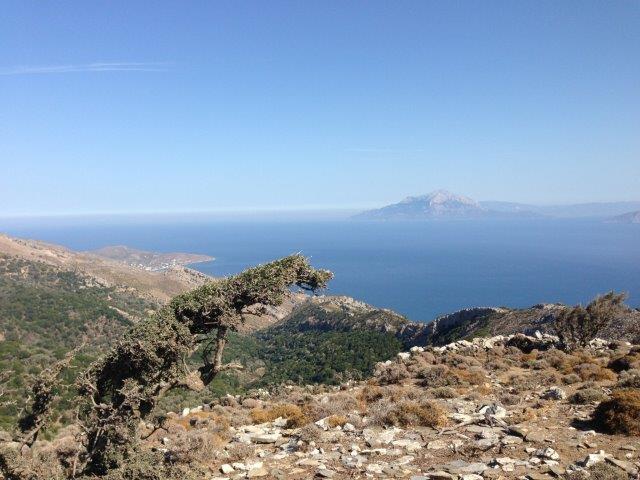Ausblick von der Akropolis