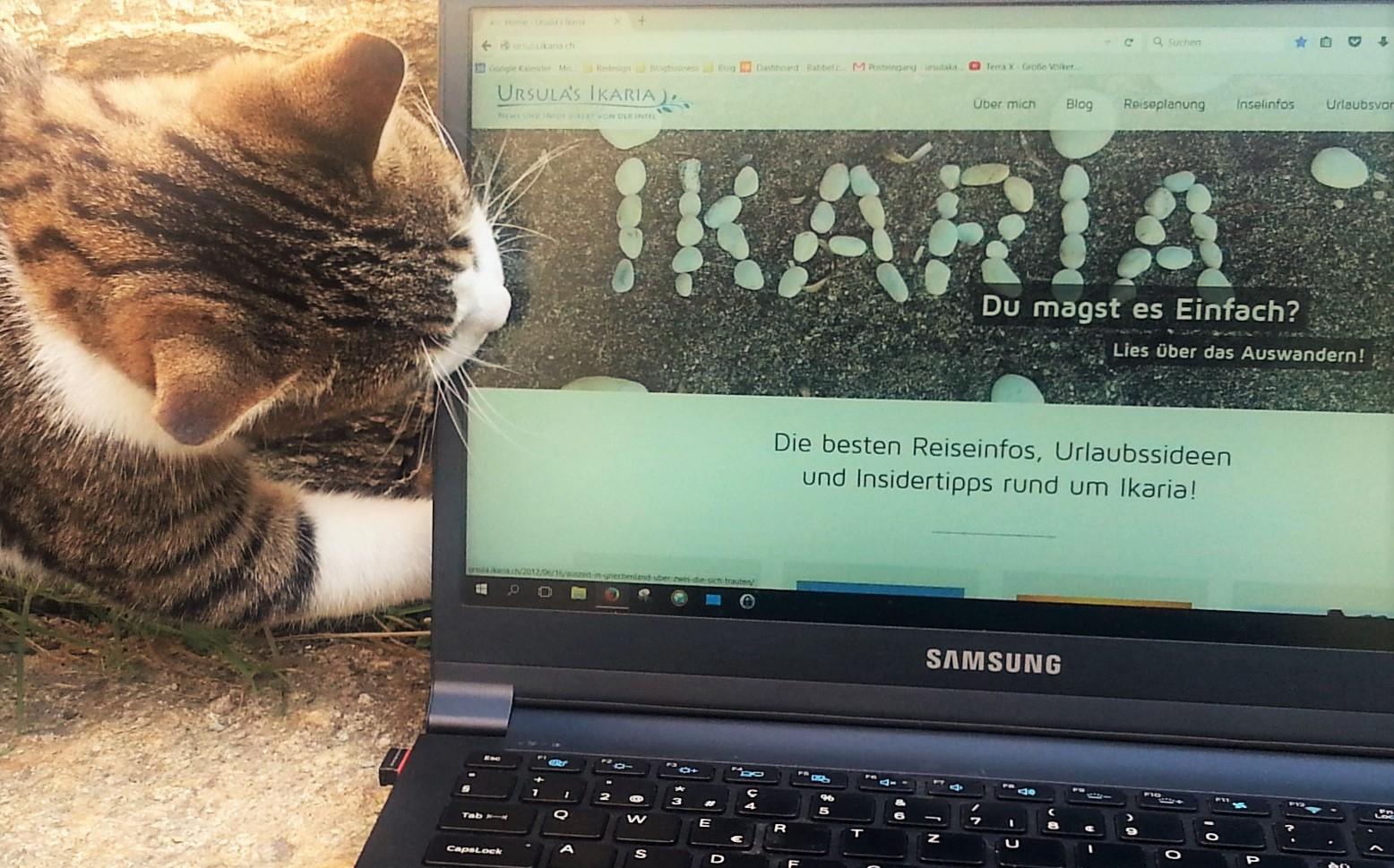 Aias frisst meinen Laptop